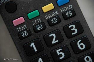 21B_0100-01_macro-LR.jpg