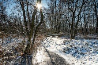 21B_0016-01_Winter-LR.jpg