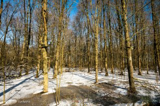 21B_0021-01_Winter-LR.jpg