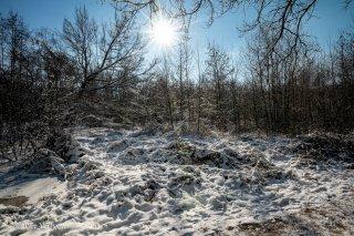 21B_0023-01_Winter-LR.jpg